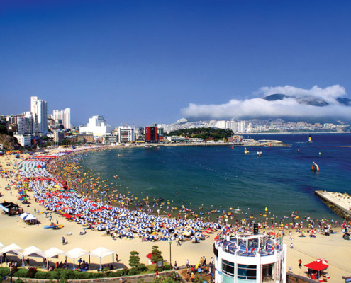 busan oneday tour